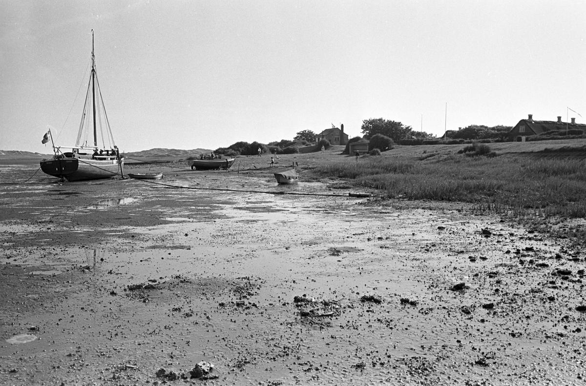 Serie. Fra Fanø, Danmark. Sønderho med stråtekte hus, Vadehavet samt lokal skoleklasse. Fotografert juni 1964.