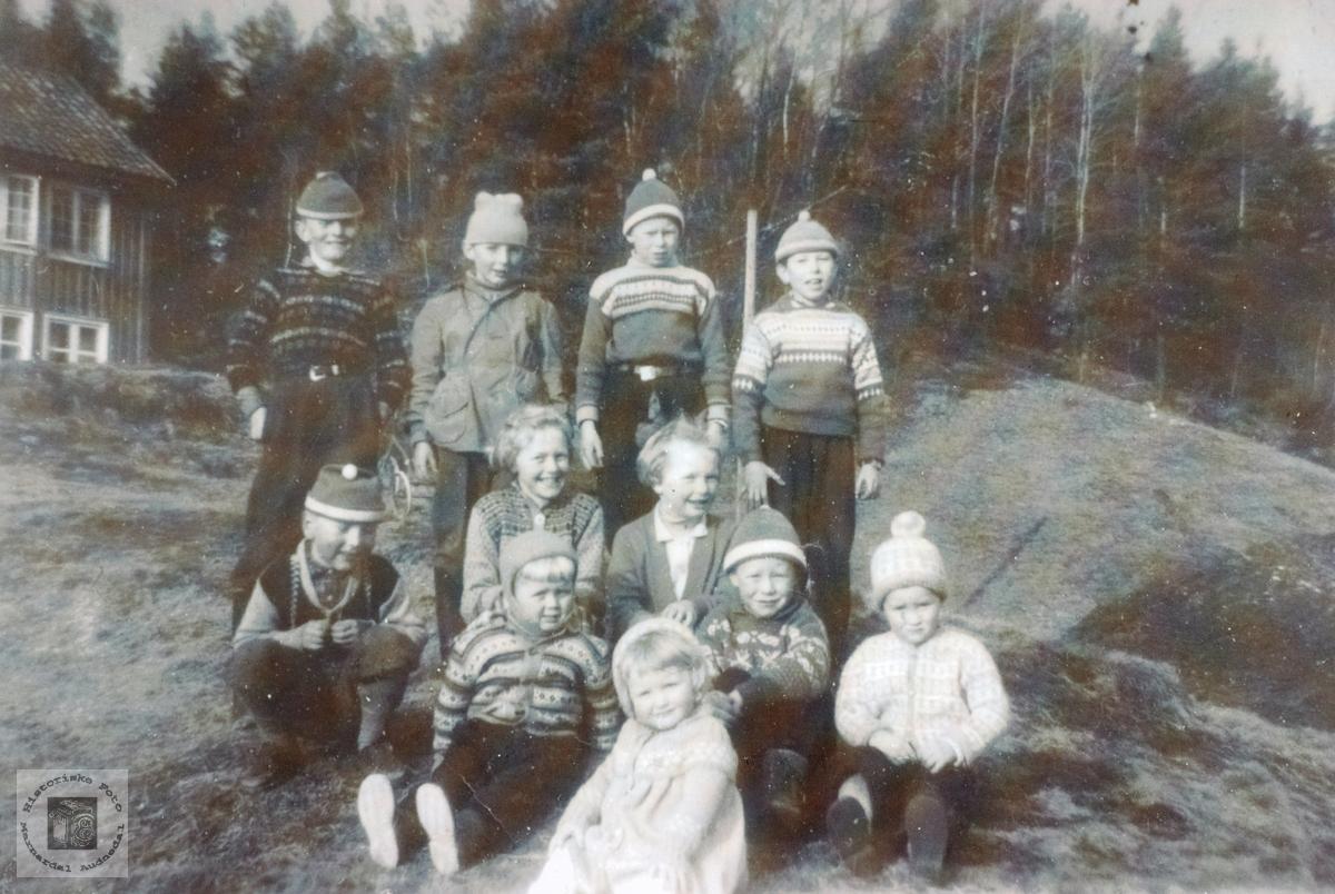 Samling av barn i Selandsdalen. Grindheim senere Audnedal. April 2019: Det meldes at opplysningene om Leland, Kjell Egil Erikson, muligens er feil.