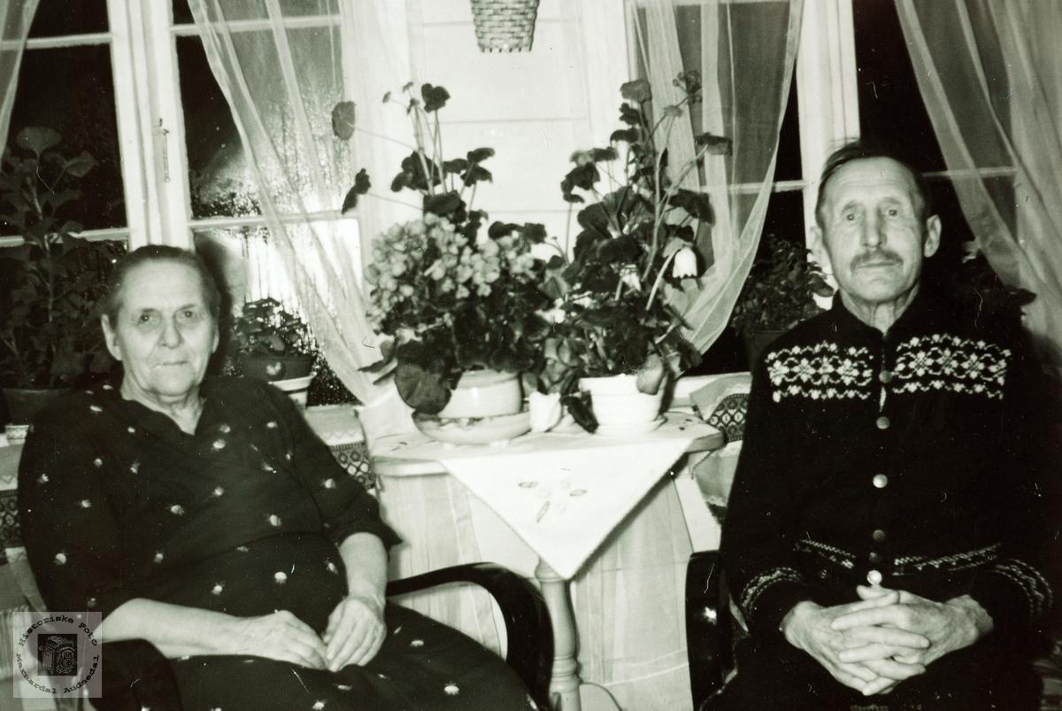 Ekteparet Guri og Tosten Haaland. Grindheim Audnedal.