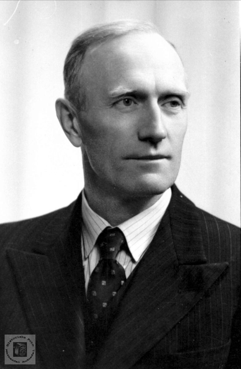 Portrett av Erik Skjævesland, Øyslebø.