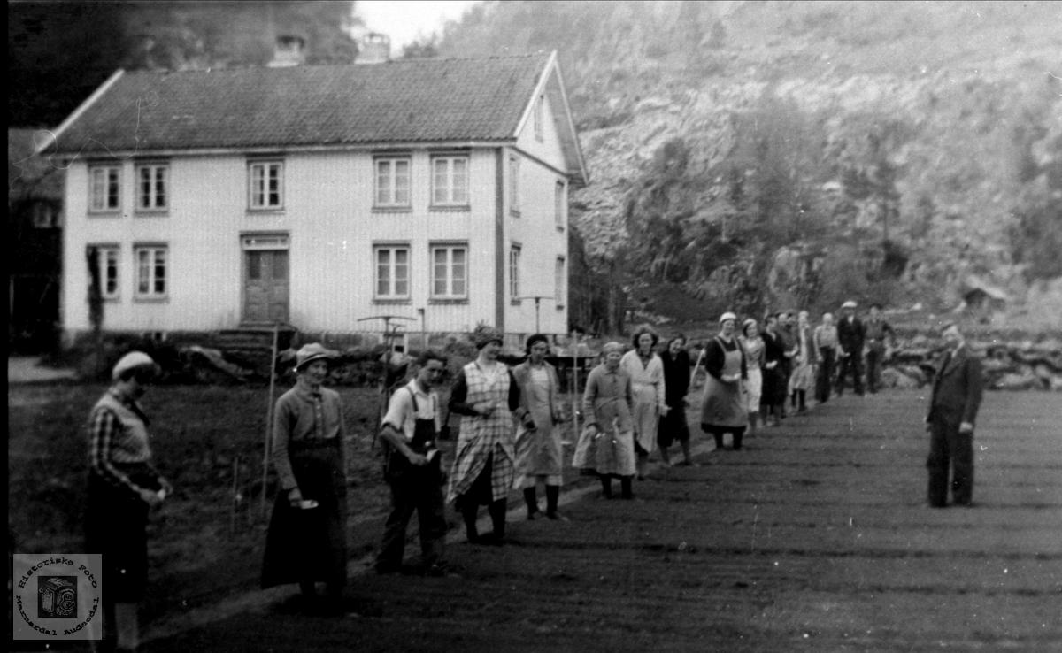 Hagebrukskurs på Usland i Øyslebø.