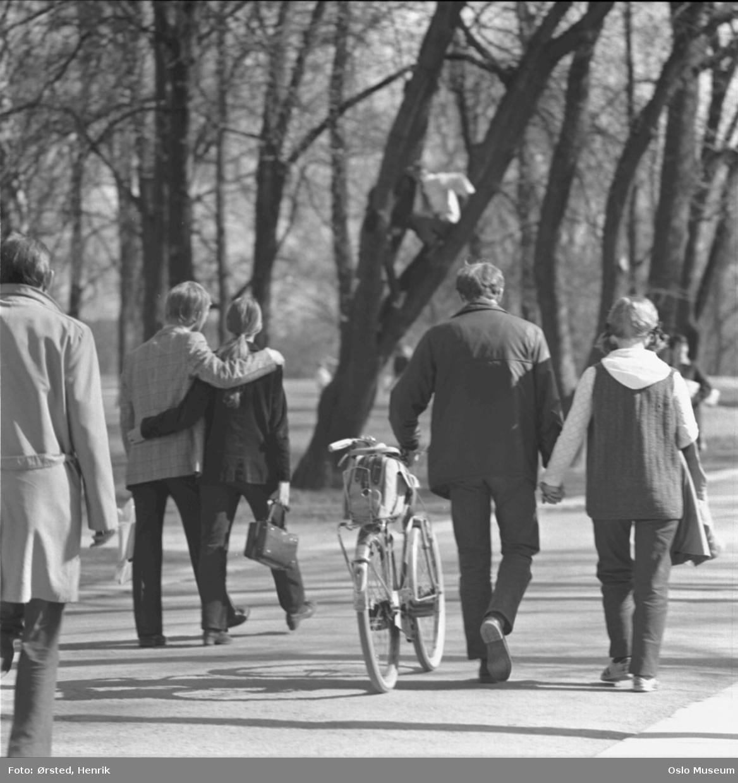 park, gangvei, mennesker, kjærestepar, sykkel, vår