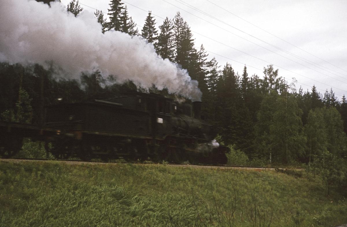 Godstog på Numedalsbanen  trukket av damplok 21b nr. 225.