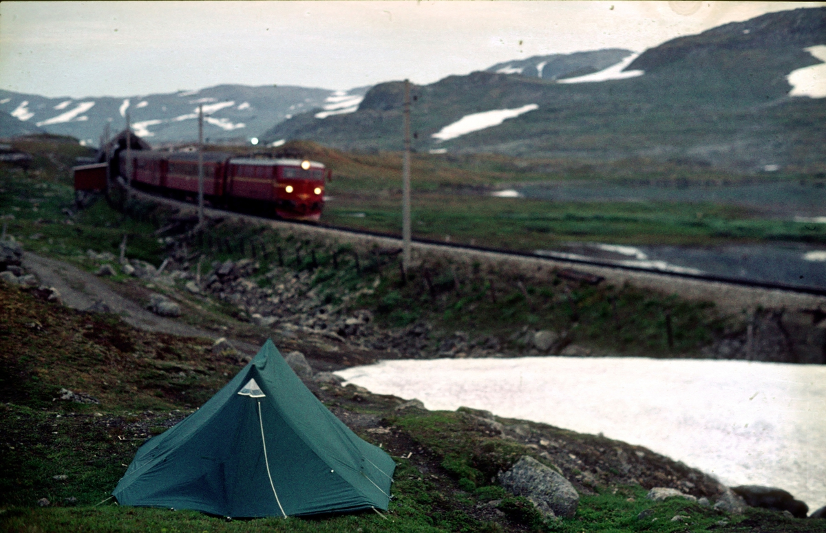 Langs Rallarvegen. Bergensbanen. Teltplass.