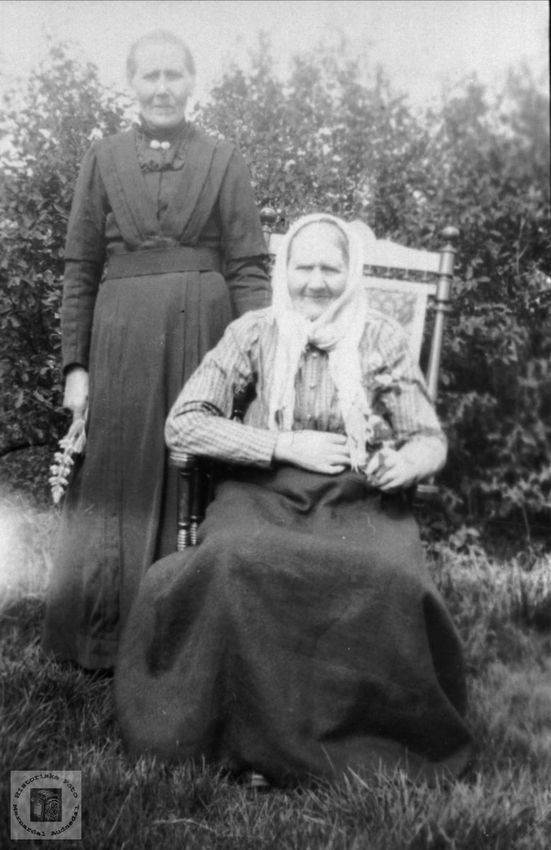 To søstre. Sissel Sveinall Birkeland og Kari Sveinall Bjørnhom
