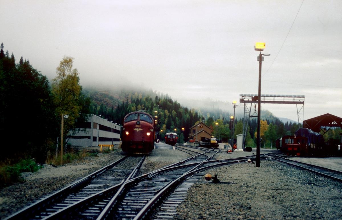Godstog 5796 i Trofors stasjon. Kryssende tog har ankommet, og lokomotivførerassistenten (fotografen) har lagt over sporveksel 1. Til høyre står stasjonens skiftemaskin, en skinnetraktor type Skd 206.