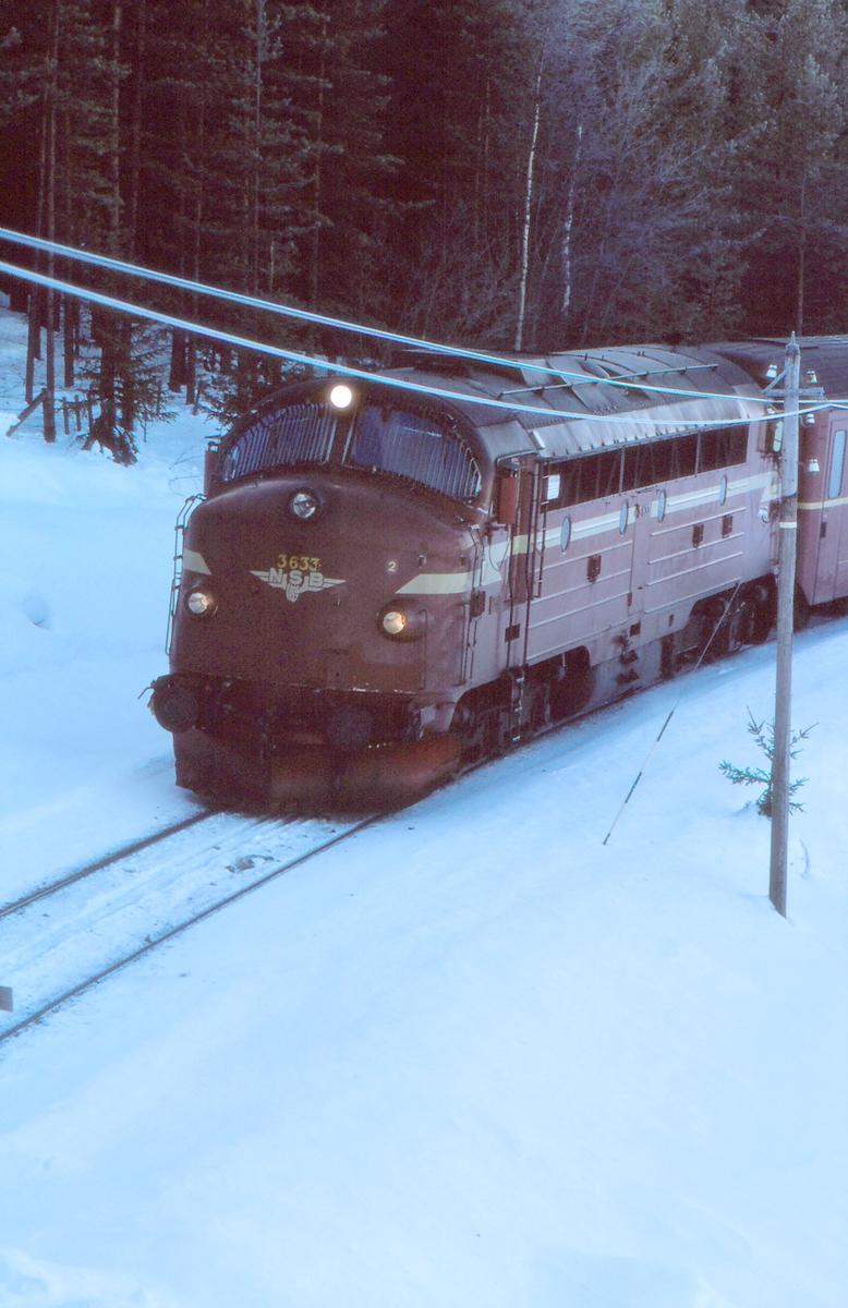 Persontog på Valdresbanen kjører inn på Trevatn holdeplass.