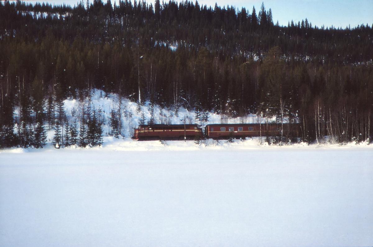 Tog 284 (Fagernes - Oslo S) ved Trevatn.