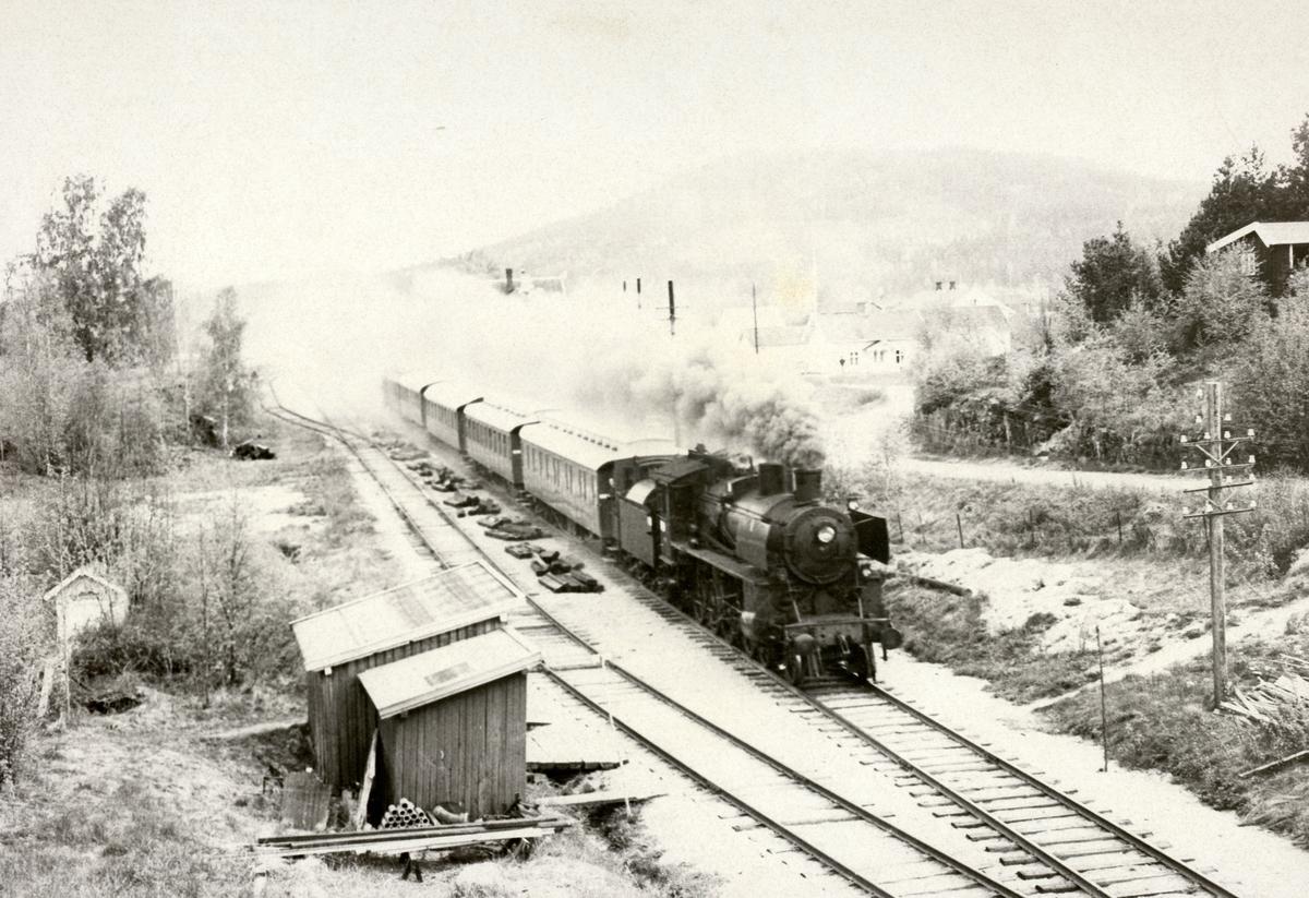 Damplok type 26c nr. 411 på Solørbanen i Svenska Järnvägsklubbens veterantog.
