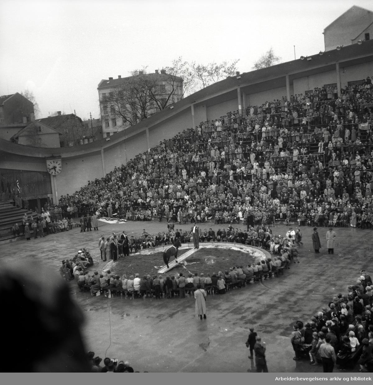 1. mai 1953 i Oslo.Framfylkingens stevne på Jordal Amfi..