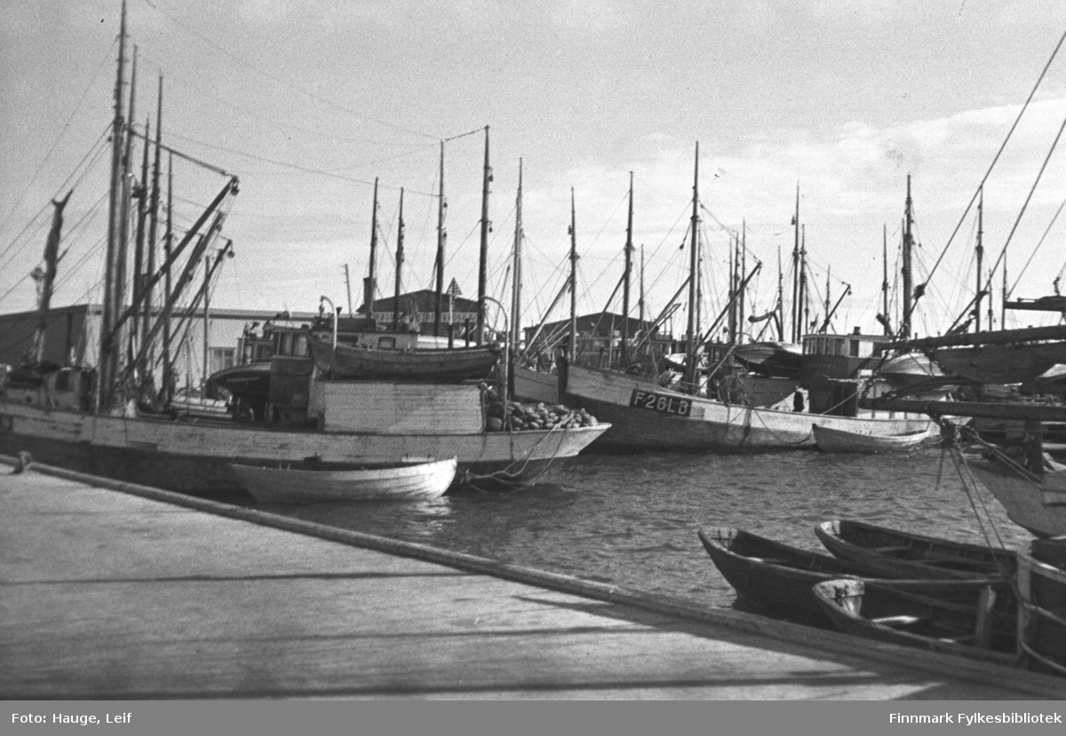 Mange loddebåter ligger ved kai i Vadsø havn.