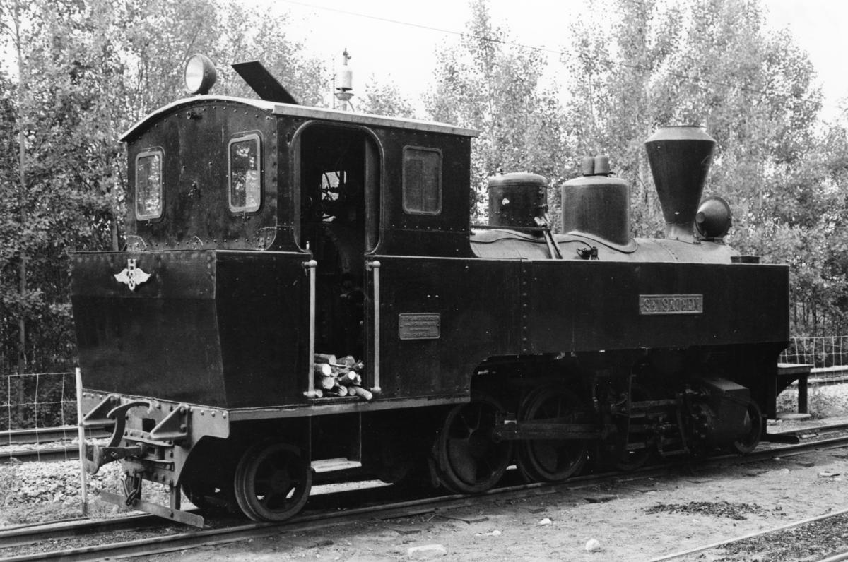 Damplok 4 Setskogen på Bingsfoss stasjon.