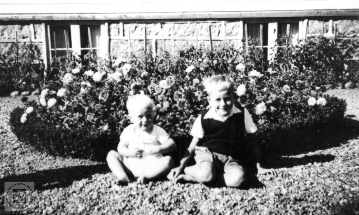 Brødre. Kjell og Torbjørn Lauvsland.
