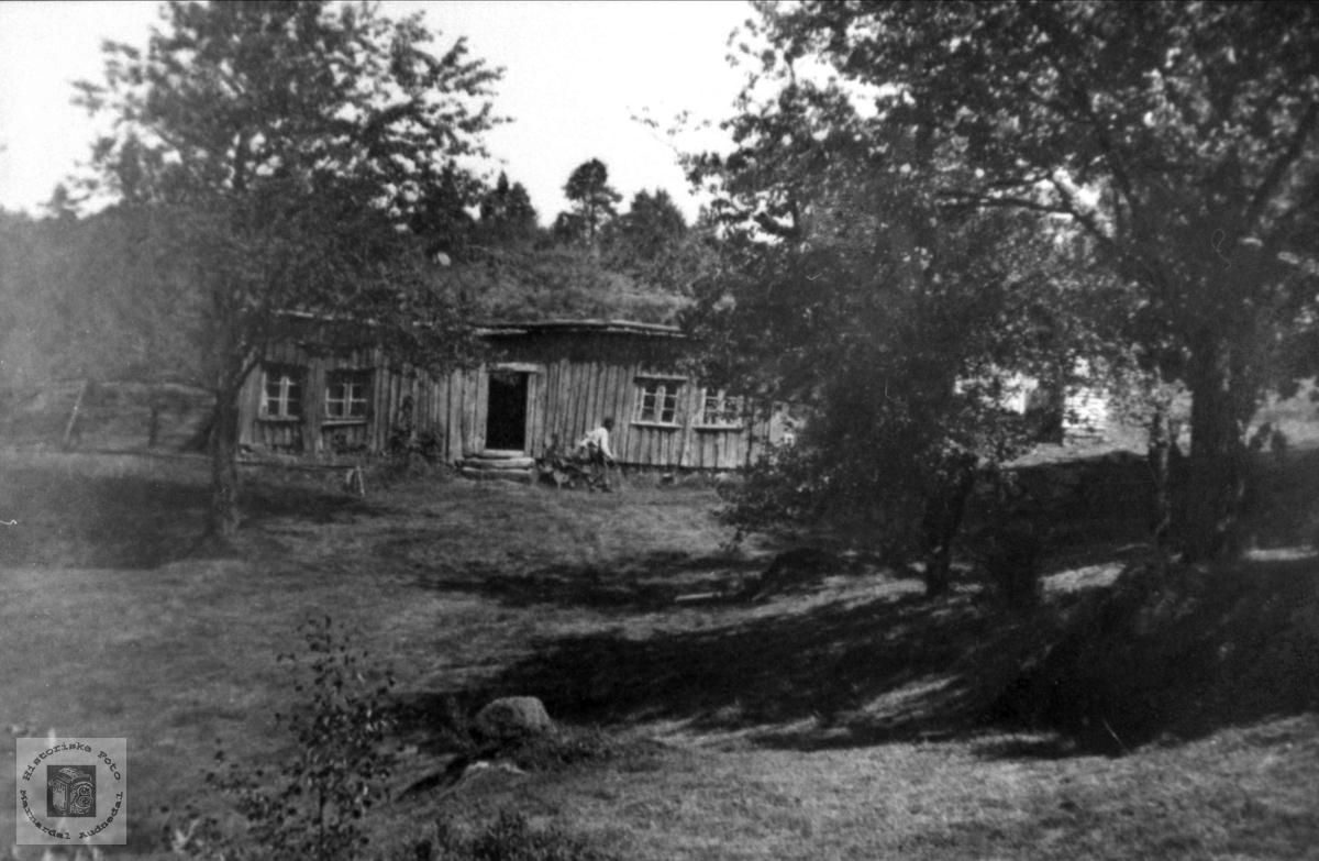 """Gamlehuset."" Hunsdal."