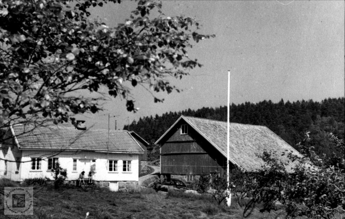 Bruk nr. 4 på Tjomsland