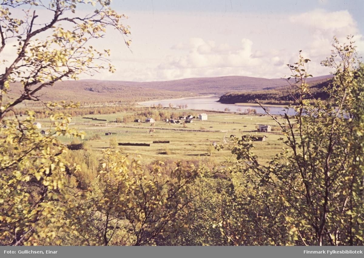 Sirma-sletta i høsten 1953. Finland på andre siden av Tanaelva.