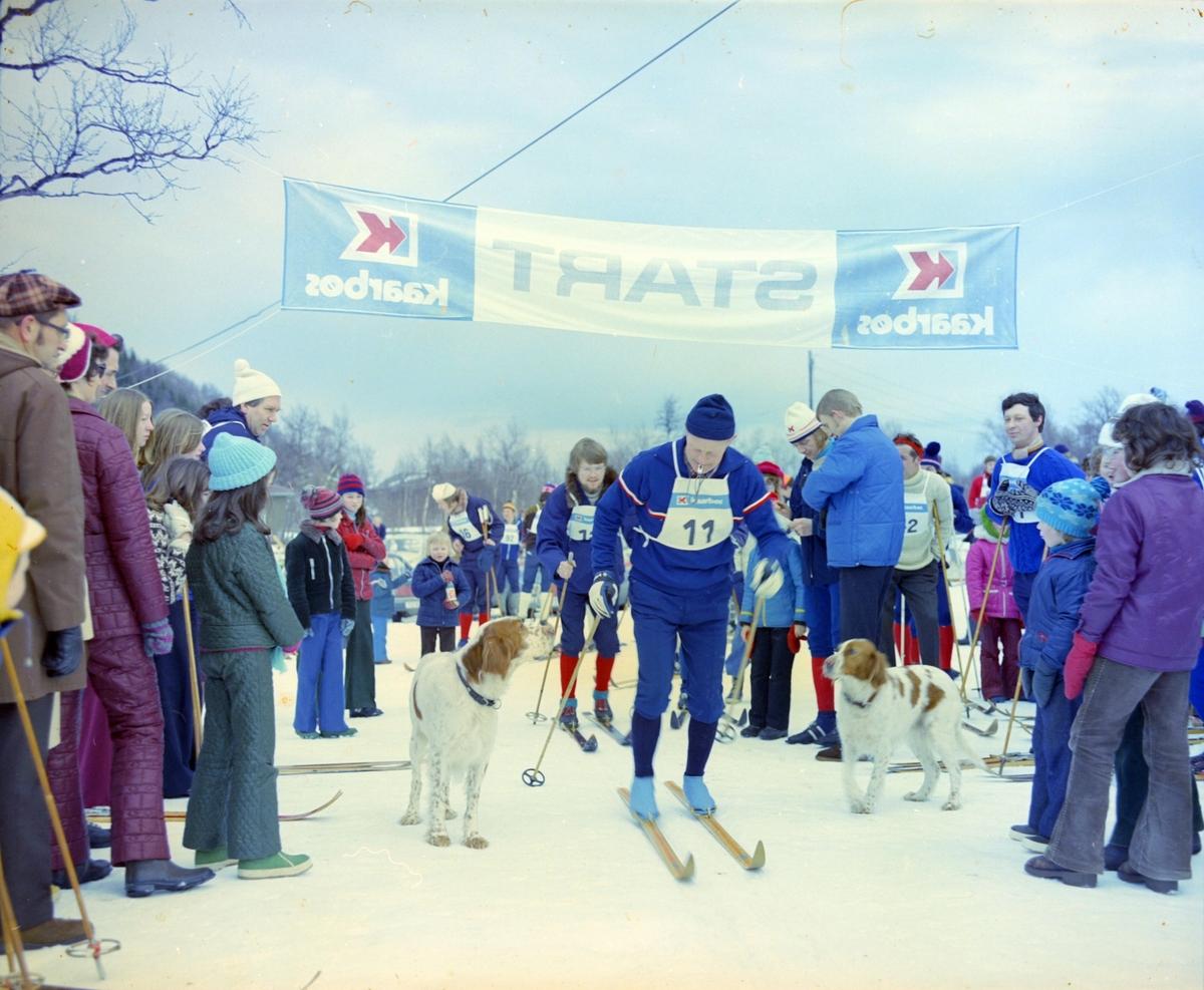 Skiløpere, tilskuere og hunder i startområdet til et skirenn.