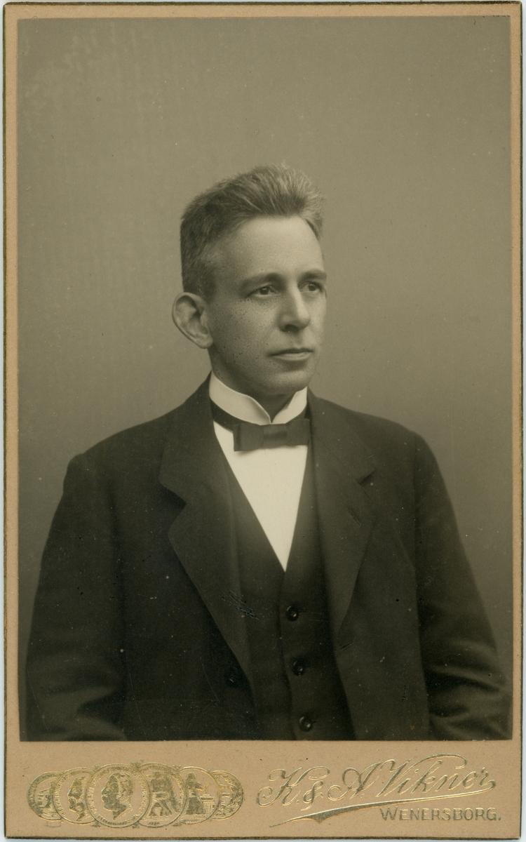 Porträtt, Hugo Dahlgren