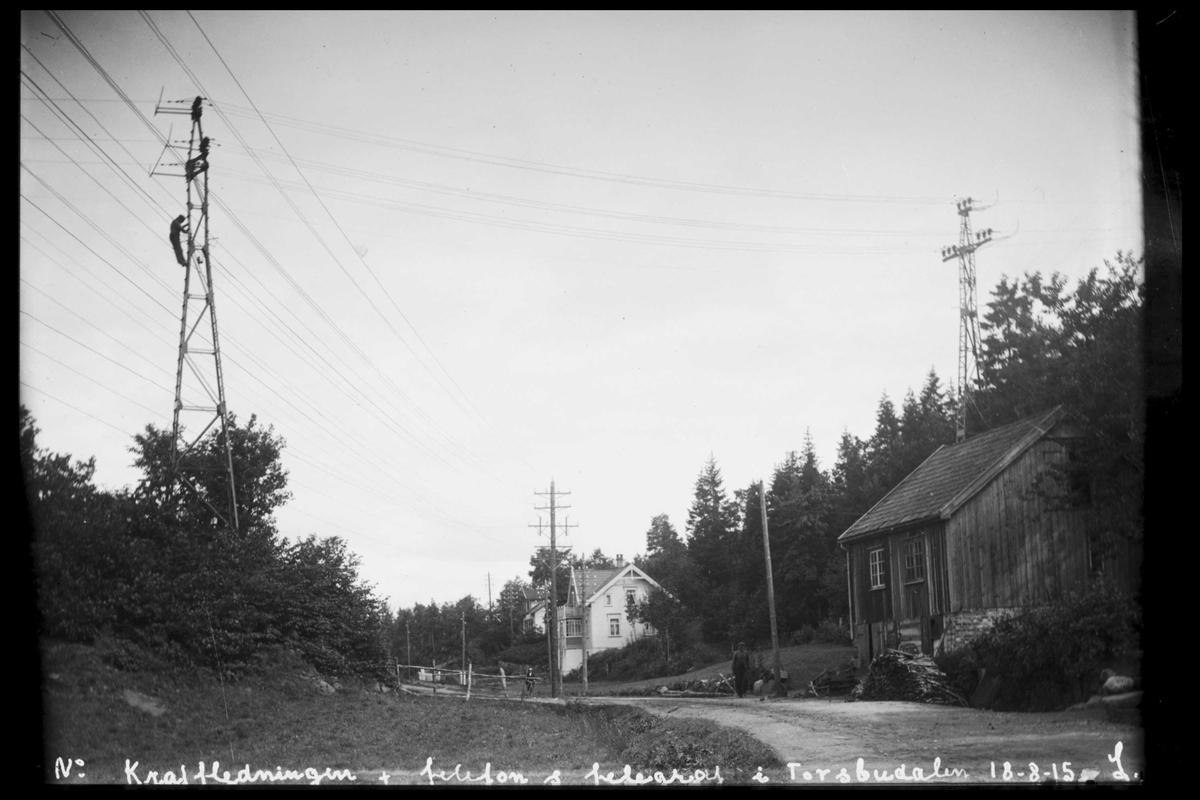 Arendal Fossekompani i begynnelsen av 1900-tallet CD merket 0565, Bilde: 85 Sted: Torsbudalen Beskrivelse: Høyspentlinja