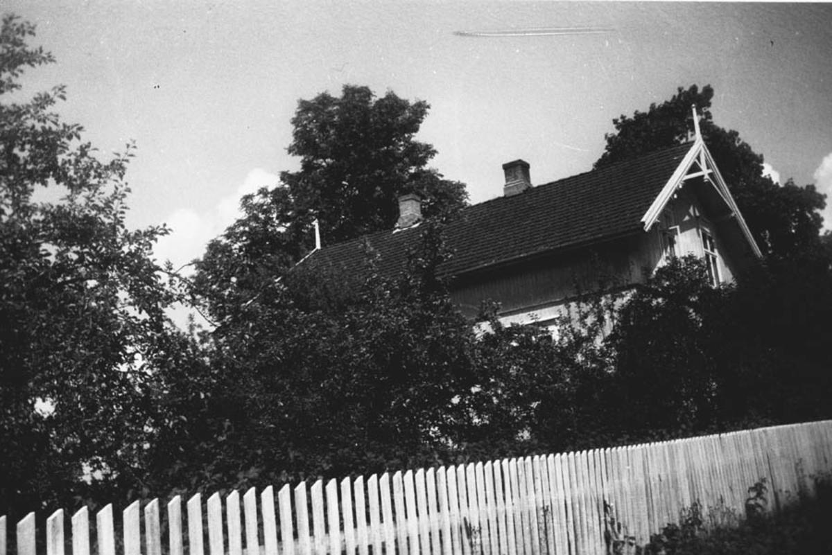 Hovedbygningen på Myrvoll med stor apaler i hagen foran.
