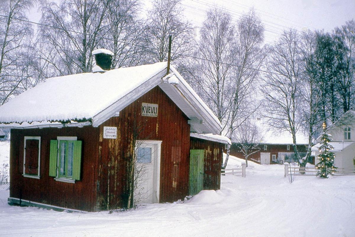 Ved Kvevli stasjon åtte år etter nedleggelsen.