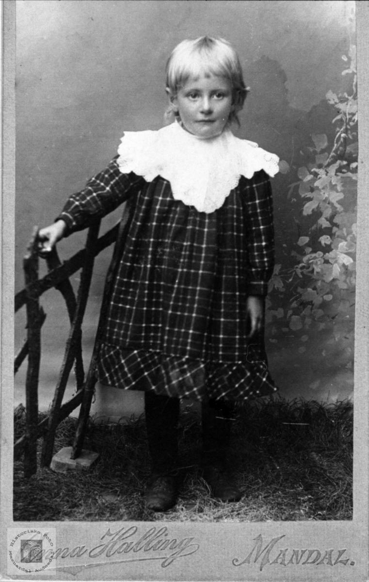 Portrett av Ingeborg Vigemyr, Øyslebø.