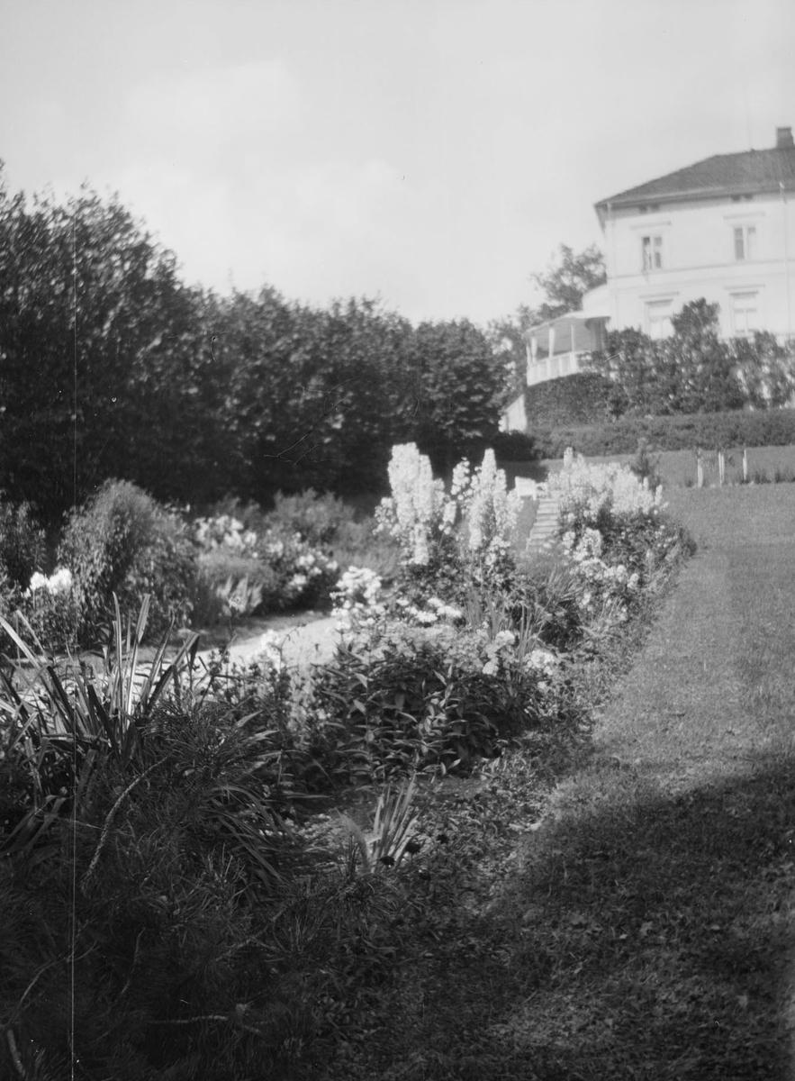 Sommerbilde av stauder og sommerblomster i hagen. Det er hekker, og friserte busker og i bakgrunnen ser man hovedhuset på Linderud Gård med veranda.