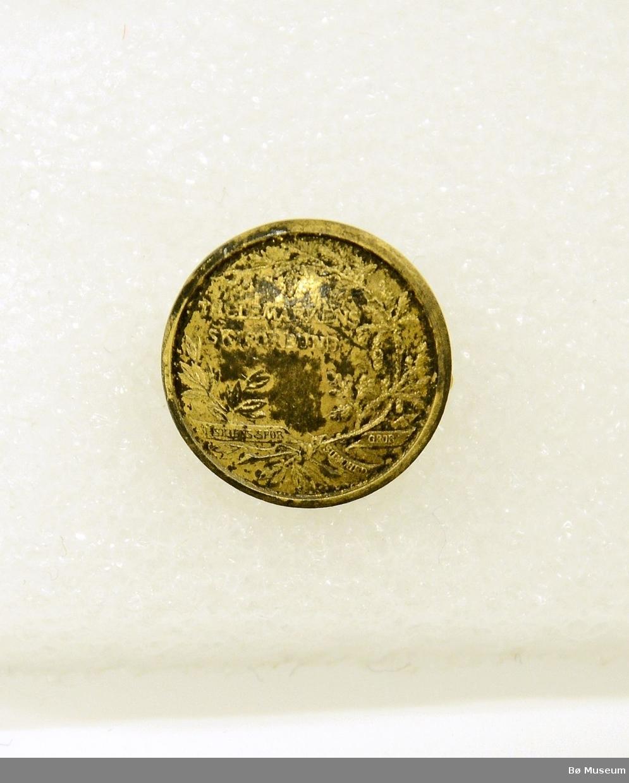 """Pin - med innskrift (svært liten skrift): """"Telemarkens Skiforbund - I skiens spor, sunnhed gror"""" I messing eller gullforgylt? (slitt og korrodert). Med nål bak. Ser ut som en knapp fra forsiden."""
