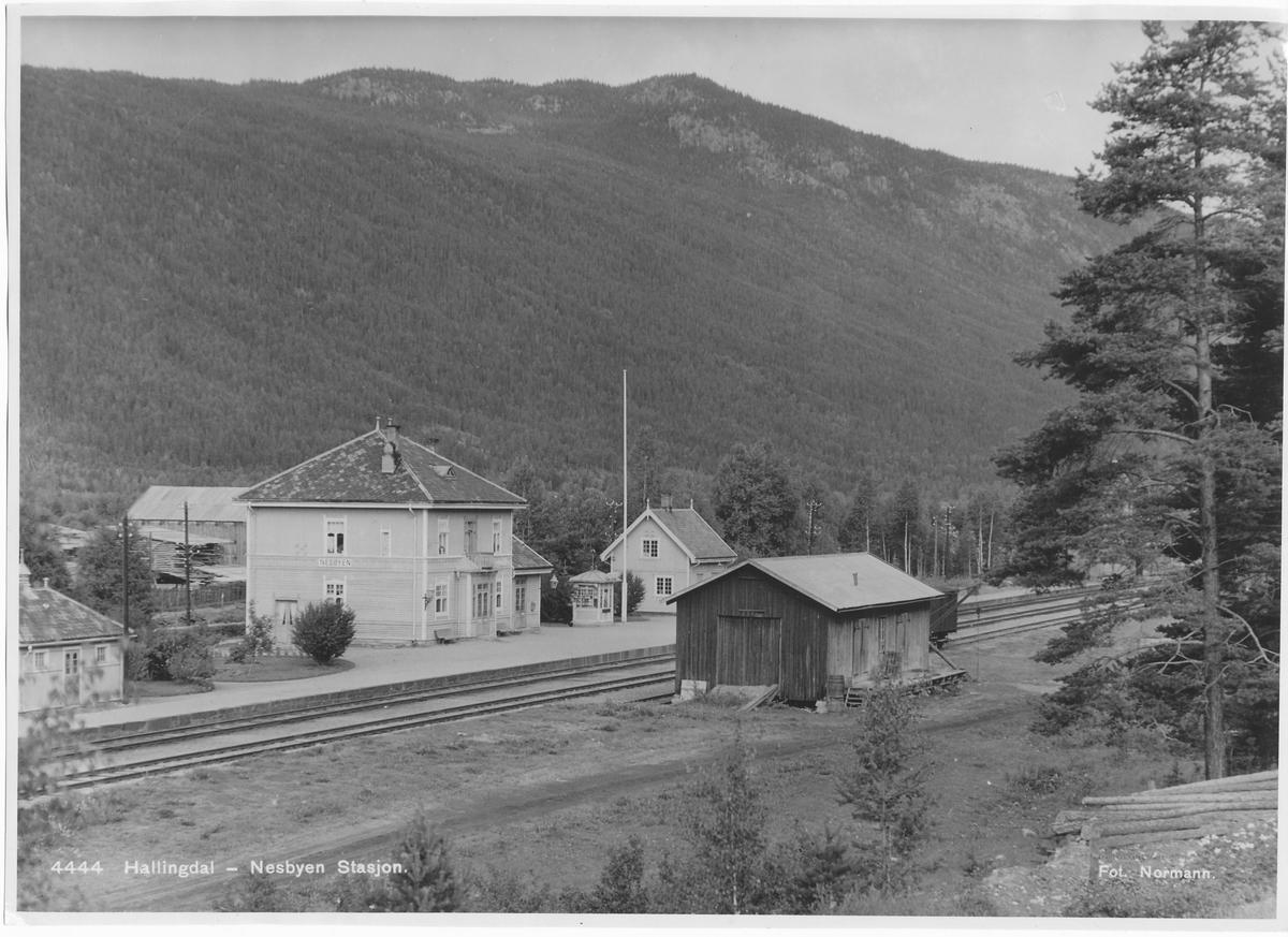 Nesbyen jernbanestasjonen.