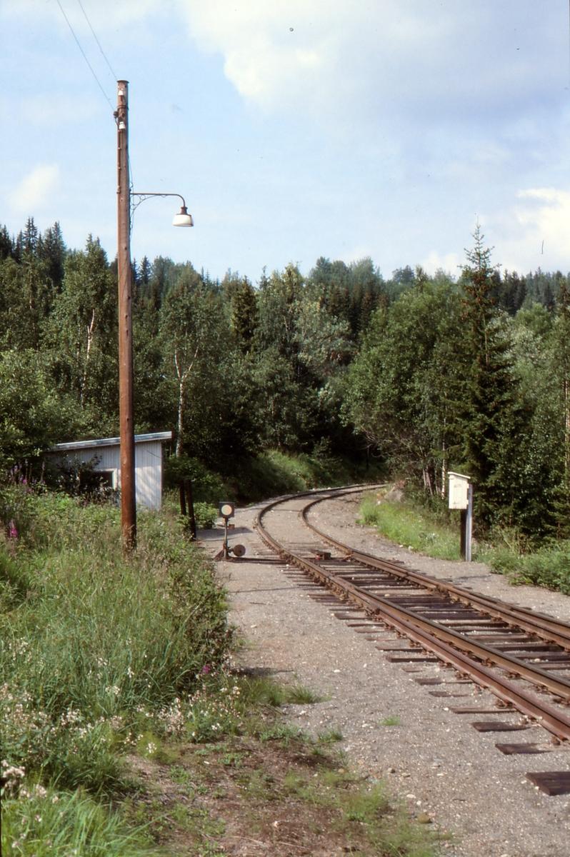 Sporveksel 2 på Etna stasjon, Valdresbanen.