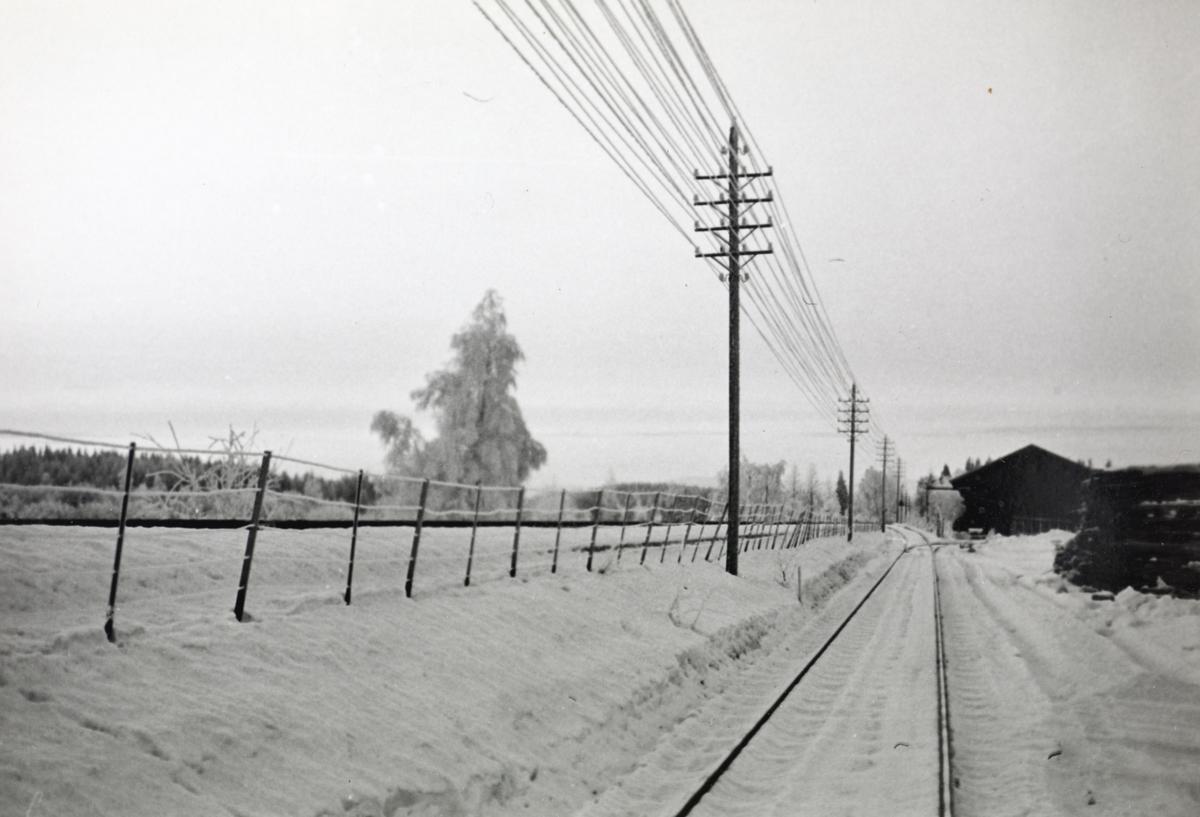 Parti fra Solørbanen.