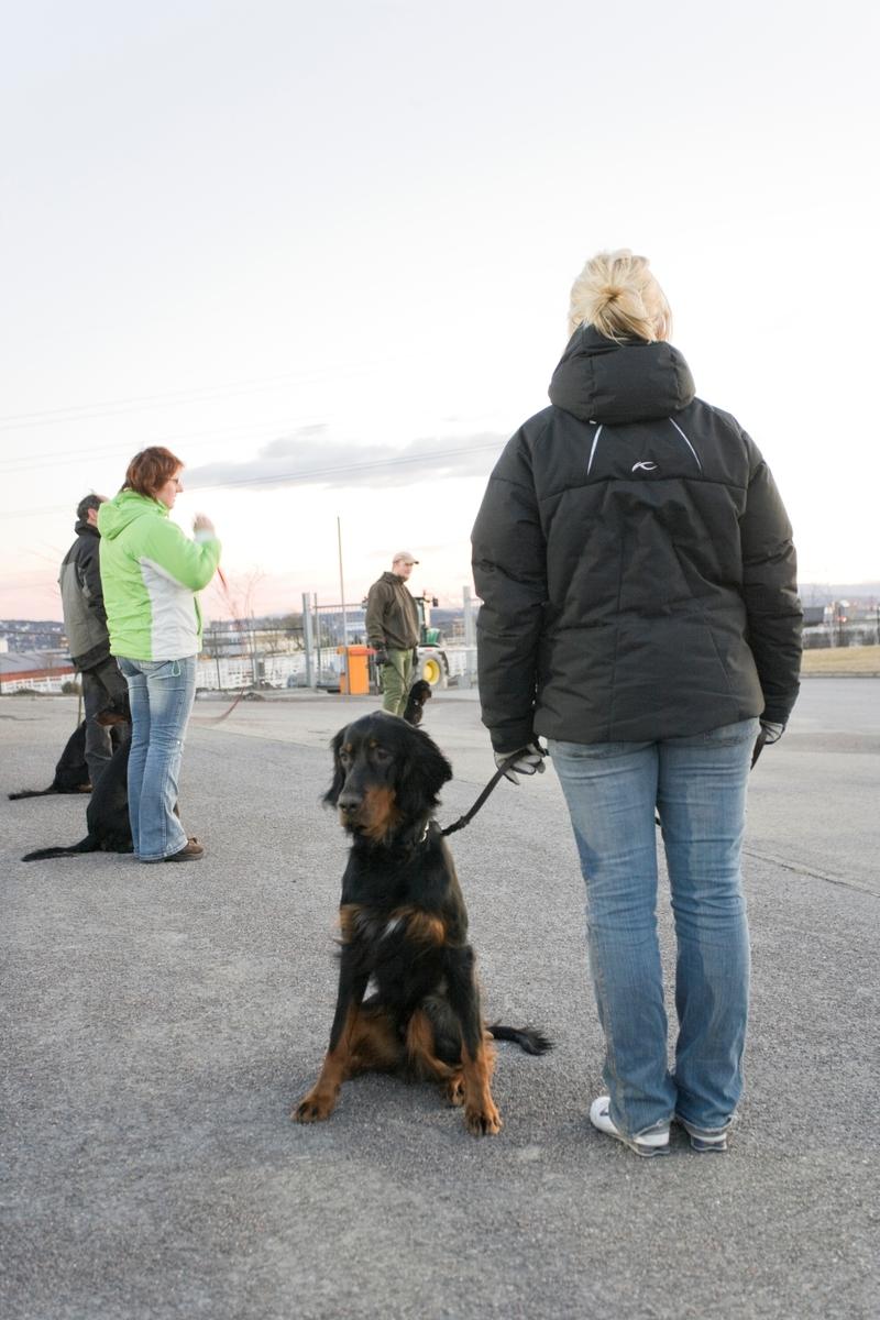 Dressurkurs for hund. Hundeeier og hund venter på instruks.