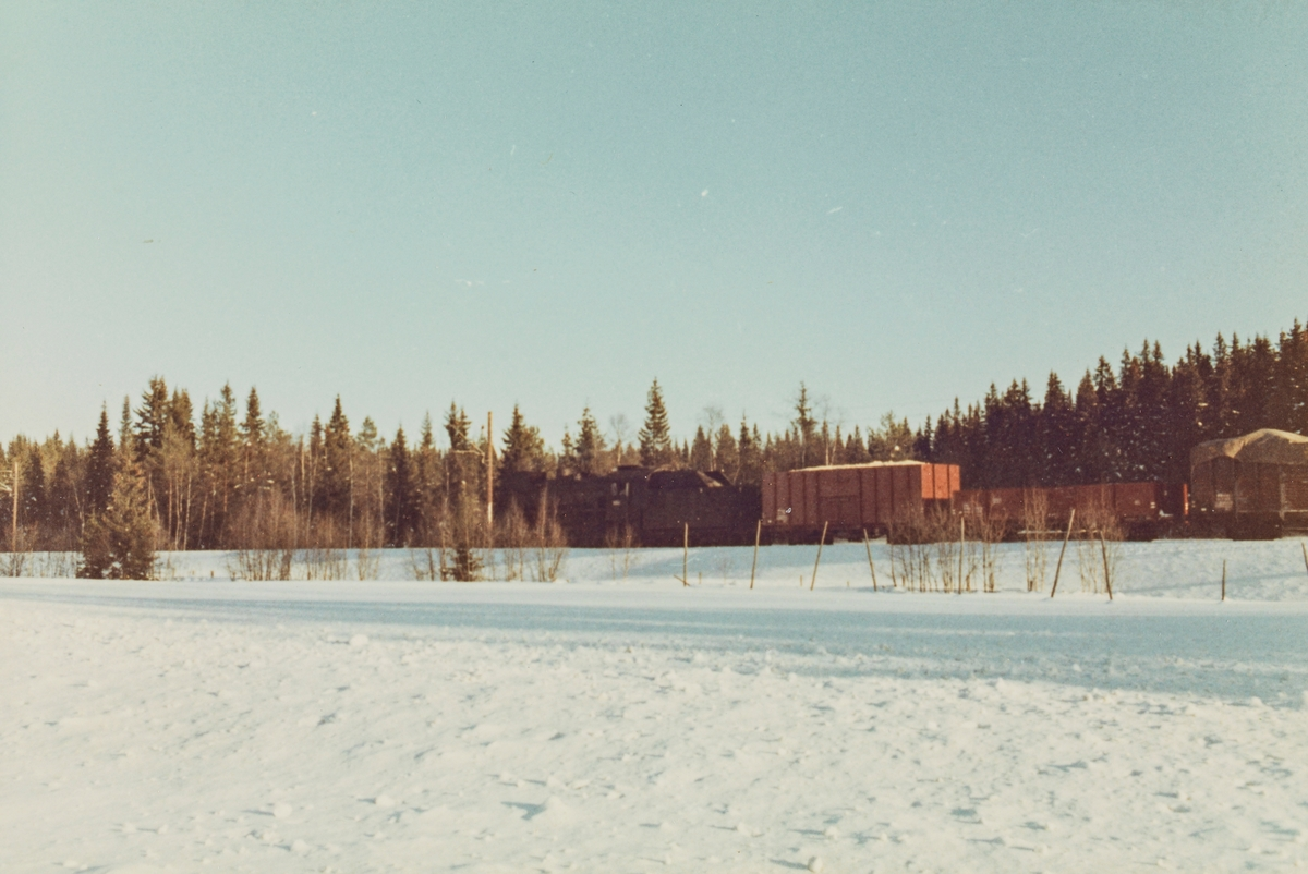 Godstog underveis fra Skreia til Eina trukket av damplokomotive type 31b 451.