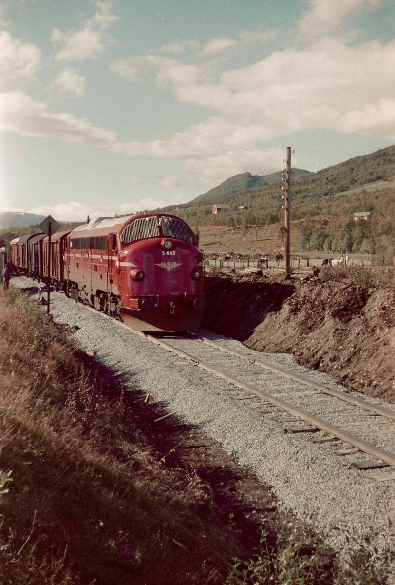 Godstog ved Myrplass holdeplass mellom Oppdal og Fagerhaug stasjoner på Dovrebanen. Toget trekkes av diesellokomotiv type Di 3 nr. 615.