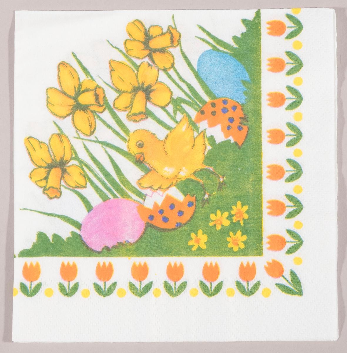 En kylling med utbredte vinger står mellom påskeliljer og to skaller av et påskeegg,og et rosa og et blått påskeegg. En rekke med tulipaner langs kanten.