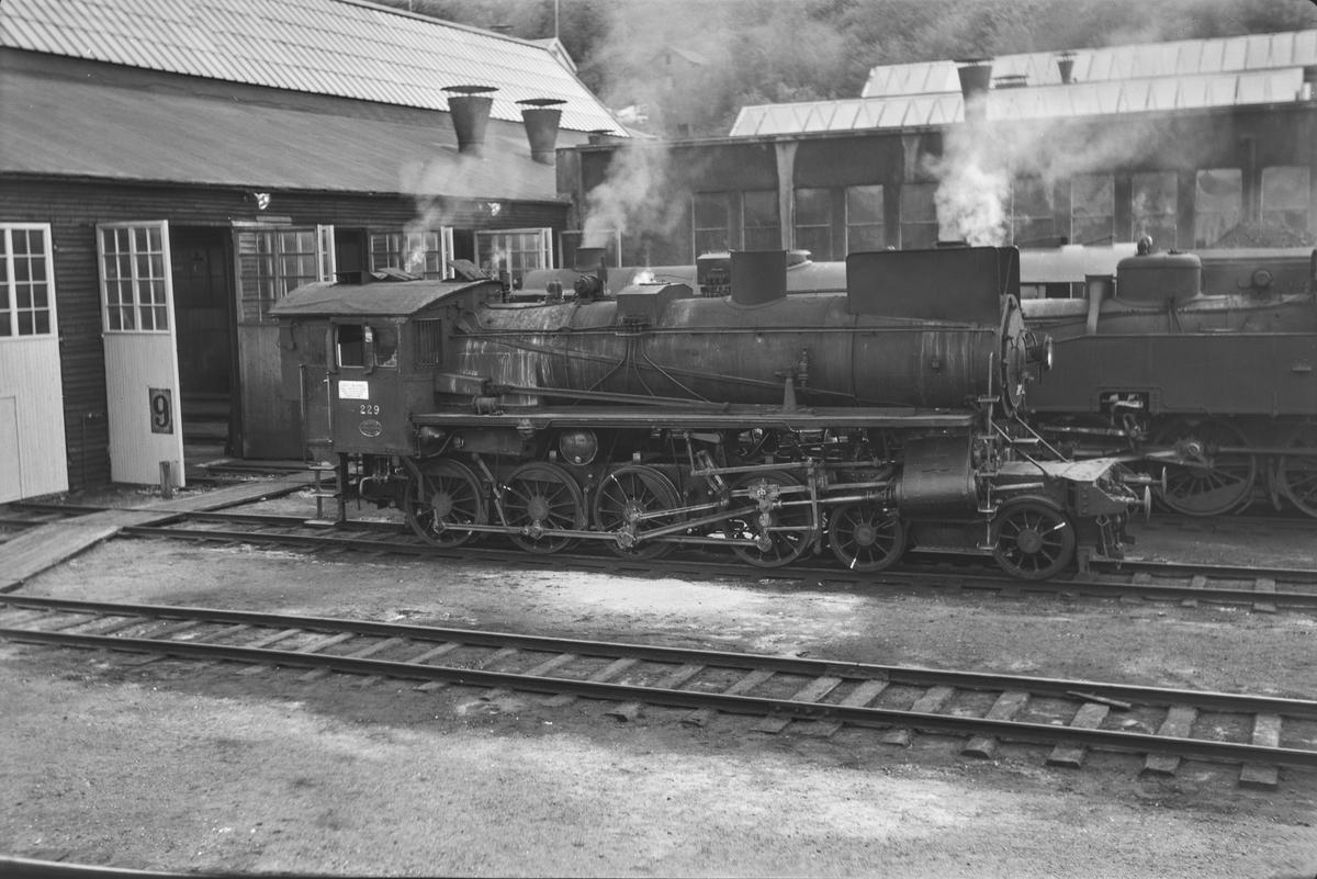 Damplokomotiv type 26b nr. 229 uten tender ved verkstedet på Marienborg.