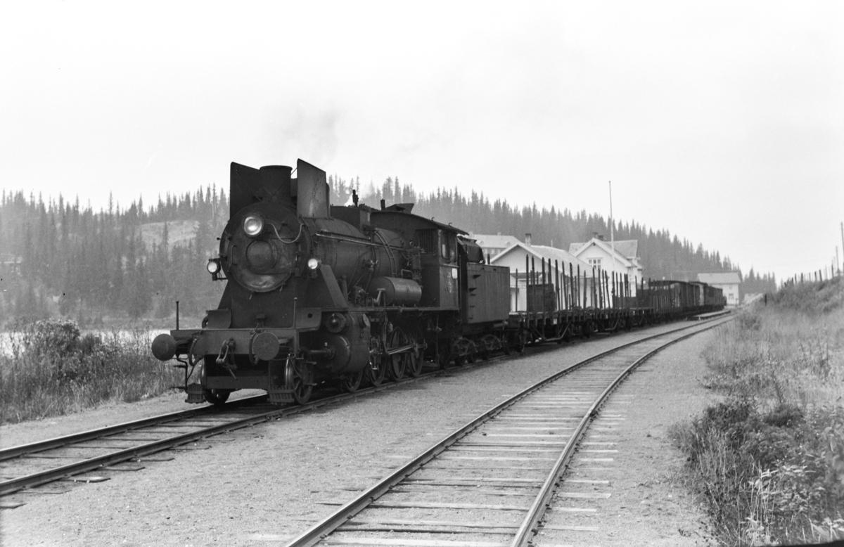 Godstog til Fagernes på Tonsåsen stasjon. Toget trekkes av damplokomotiv type 24b nr. 221.