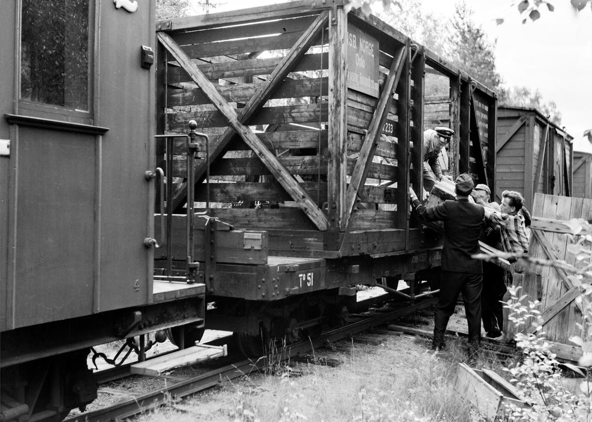 Damplokomotiv type XXIXb nr. 7 Prydz med oppsamlingstog etter Aurskog-Hølandbanens nedleggelse, her i nærheten av Aurskog stasjon.