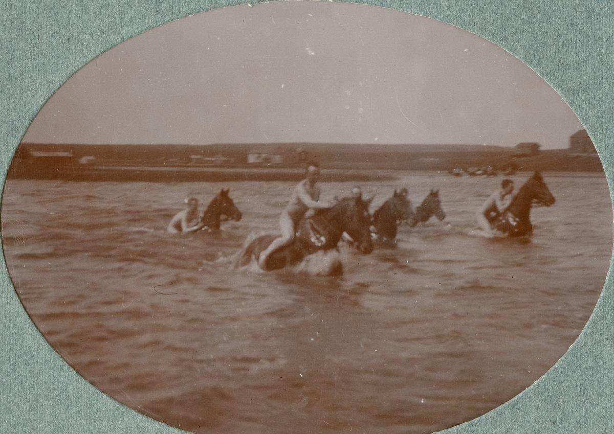 Soldater och hästar vid stranden.