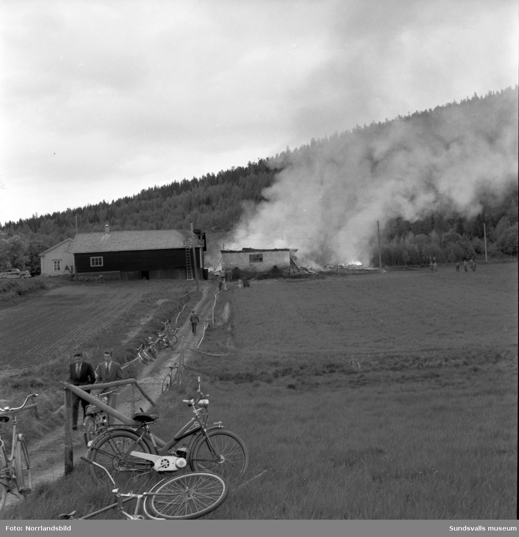 En ladugårdsbrand vid Silje gård där 15 kor blev lågornas rov. Hubert Dahlin från Liden var den som upptäckte och larmade om branden och han kunde också i sista stund rädda tvåårige Sven Olof Sandqvist från att bli instängd av lågorna. Sven Olof ses på sista bilden, troligtvis i famnen på sin mor Rut Sandqvist. Förutom ladugården så brann en 14 meter hög silo, en loge och en lada ner. Det näraliggande stallet/vagnboden kunde dock räddas.