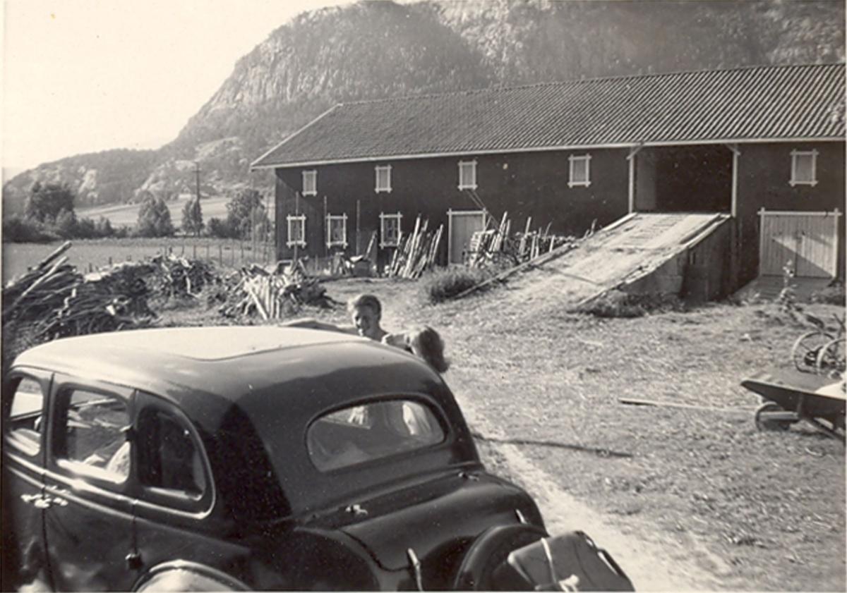 Besøk på Tjønntveit, 9 bilete av besøk på Tjønntveit i Bø