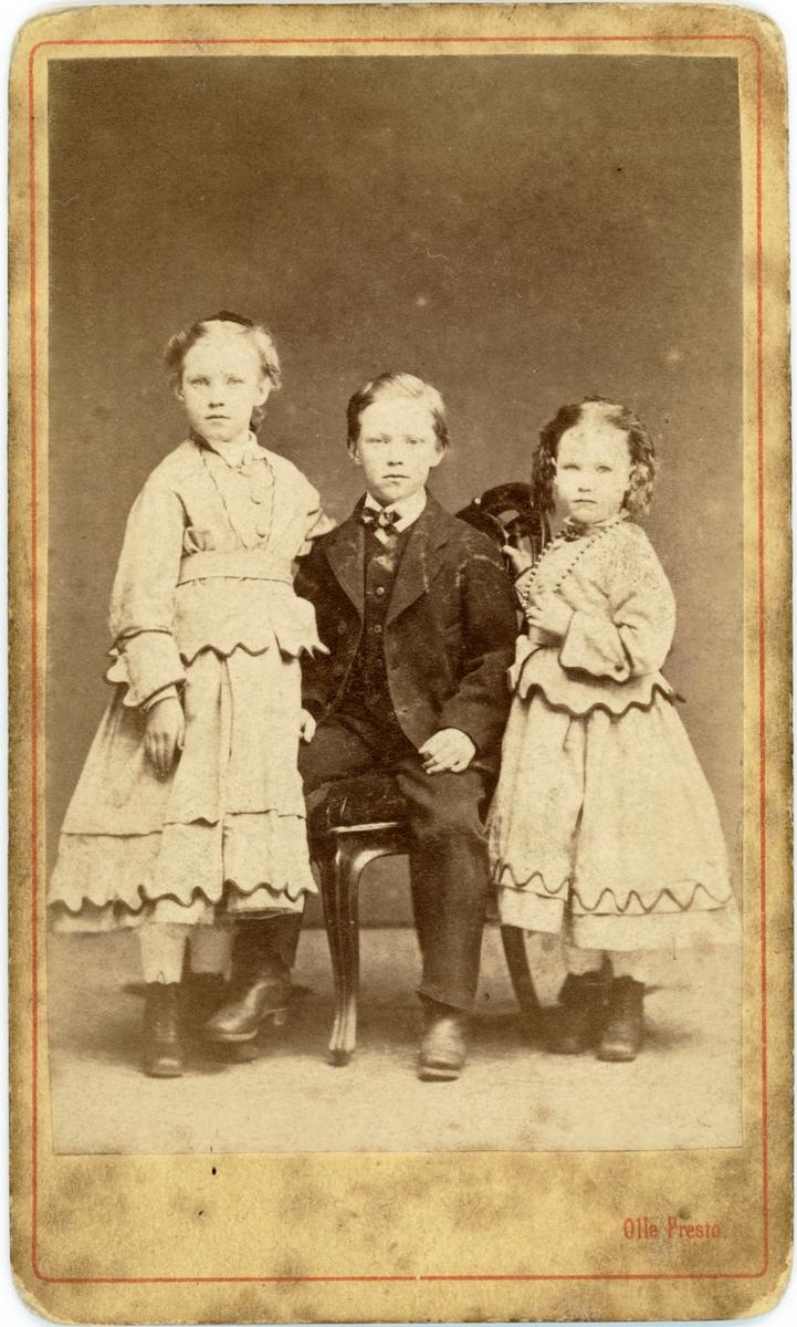 Porträtt. Gruppbild barn