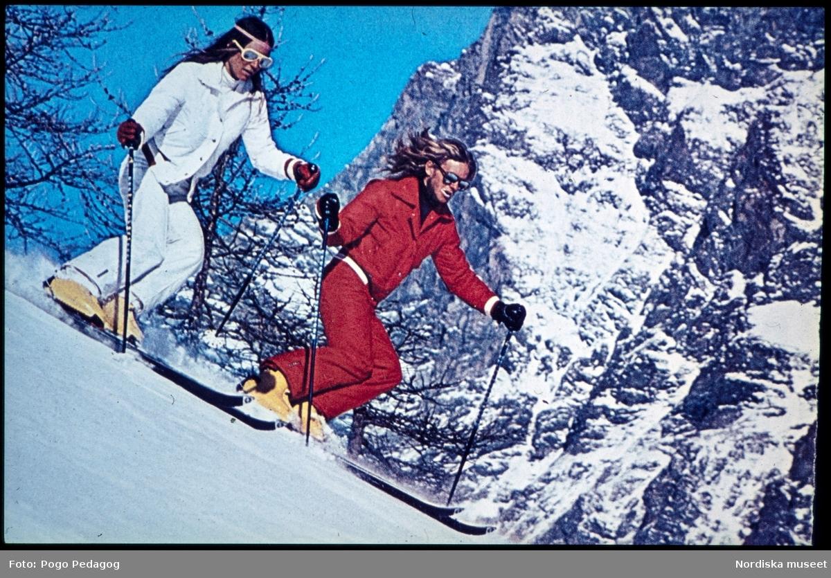 Vintersport