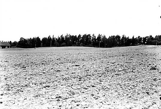 Altuna socken Fröslunda RAÄ fornlämning 30. Gravhögar från nordost.