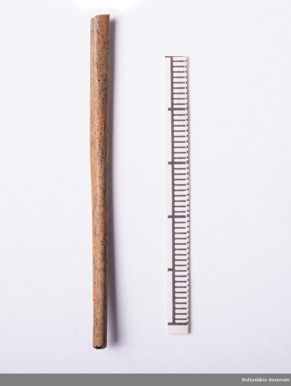 Djurarter i fyndenheten: Höns, gås, ormvråk, duvhök samt fisk (långa, strömming, torsk, mm)  Totalt antal påsar/fyndnr: 10 Intern numrering osteolog M. Vretemark: K110