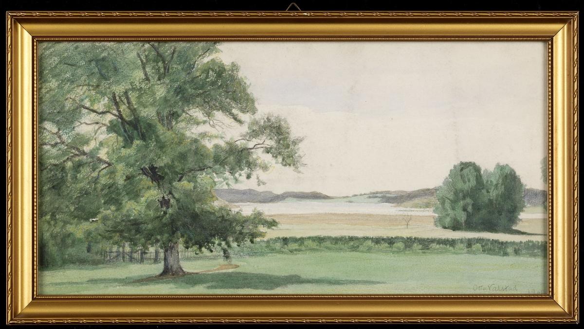 Landskap, flat gressbakke i forgr. m. stort tre tilv., i bakgr. vann, lavt høydedrag, lys gråblå himmel