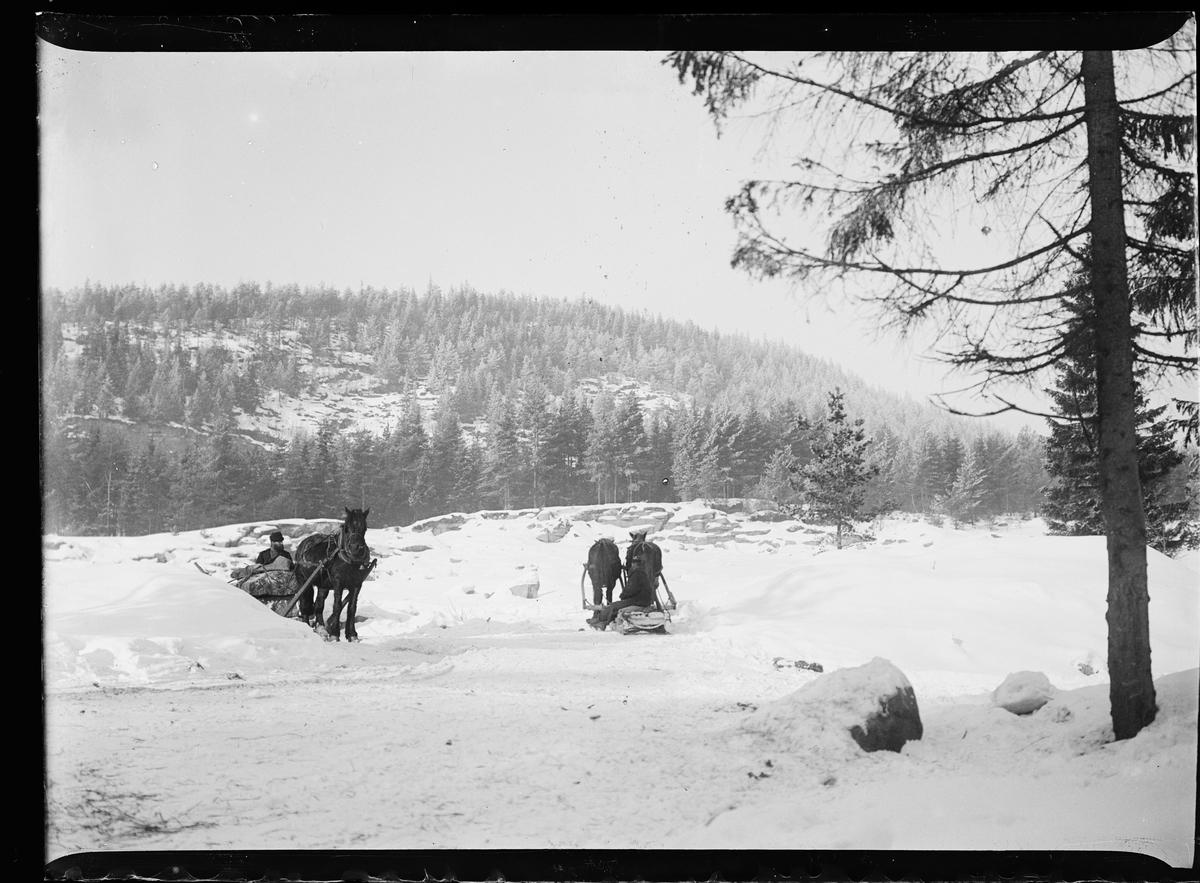 Vinterbilde. Tre hester med slede frakter store steiner.