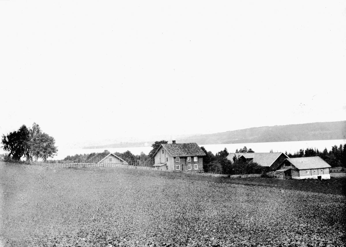 Gardsbruk Bredvold, Nes, Hedmark. Den gamle føderådsbygningn, hovedbygningen, 2 låver og fjøs.