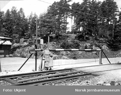 Planovergang på Vennesla stasjon