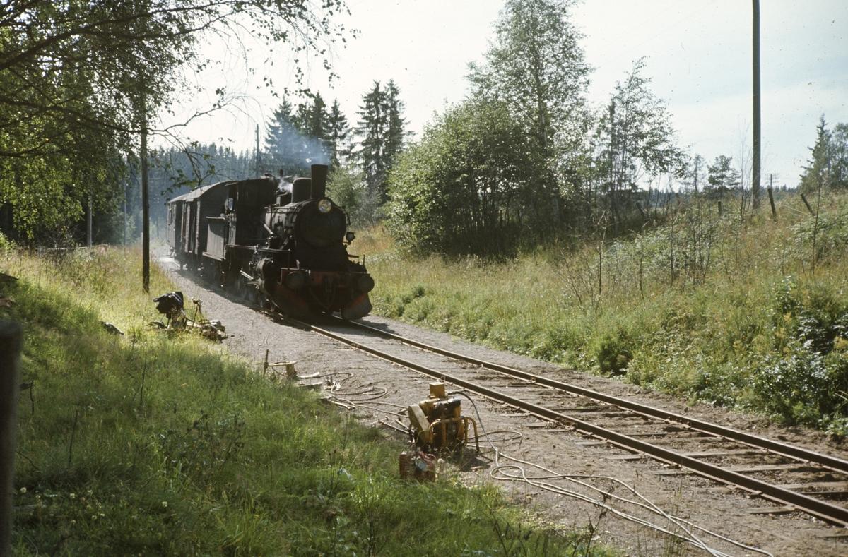 Godstog på Skreiabanen. Vedlikeholdsarbeider på sporet pågår.